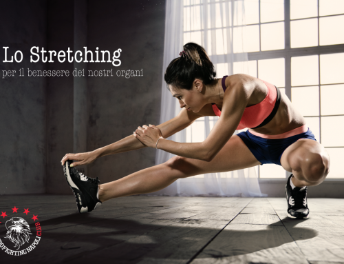 Perchè lo Stretching fa bene al cuore e ai nostri organi?